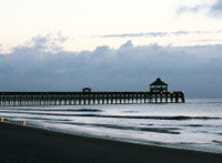 folly beach south carolina official site for fun follybeach folly beach 200x147
