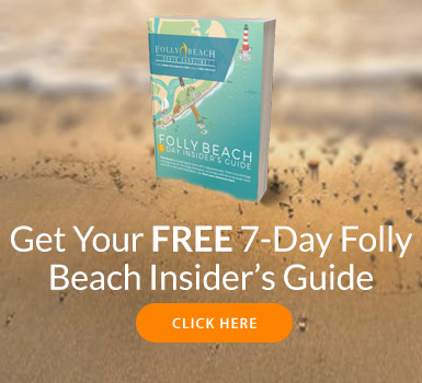 What to Do When Jellyfish Crash Your Beach Day | FollyBeach com®